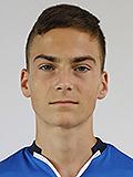 Александър Мицев